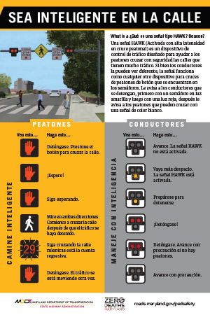 HAWK Safety Beacon Tip Card in Spanish (en Español)
